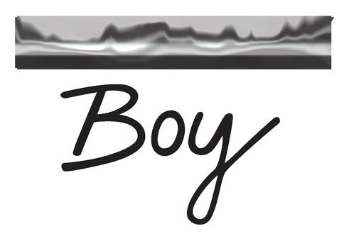Factory Boy